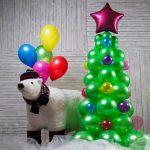 Новогодняя композиция из латексных воздушных шаров без рисунка